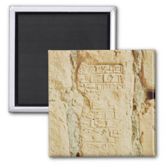 Cuneiform script on a palace wall square magnet