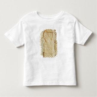 Cuneiform script on a palace wall toddler T-Shirt