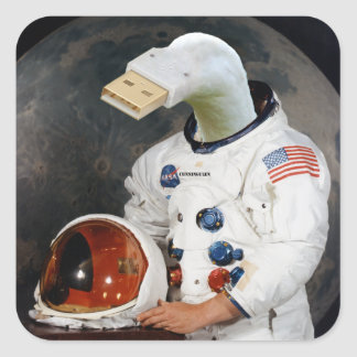 Cunningulen the Astronaut Stickers