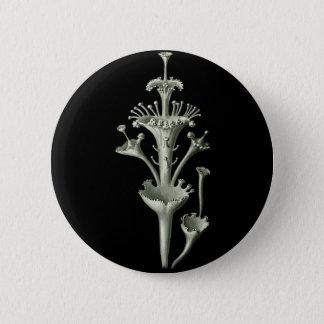 Cup Lichen 6 Cm Round Badge