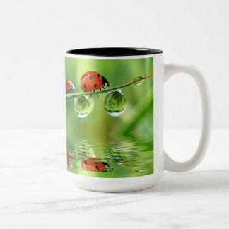 Cup mariquitas. Ladybird mug