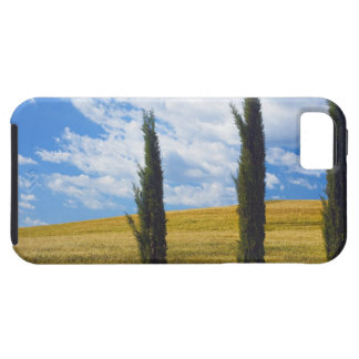 (cupressus sempervirens)  - Europe, Italy, 2 Case For The iPhone 5