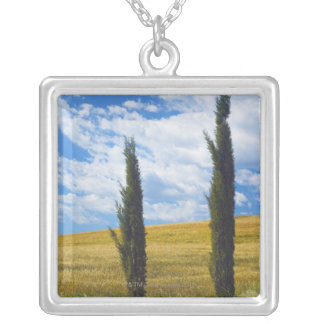 (cupressus sempervirens)  - Europe, Italy, 2 Silver Plated Necklace