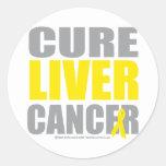 Cure Liver Cancer Round Sticker