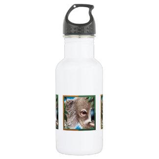 Curios Koala Liberty Bottle