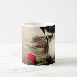 Curiosity Cup Basic White Mug
