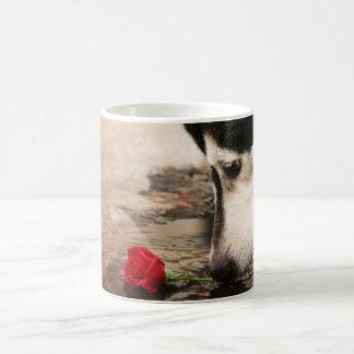 Curiosity Cup Mugs