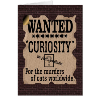 Curiosity Killed the Cat Wanted Poster - Vintage Greeting Cards