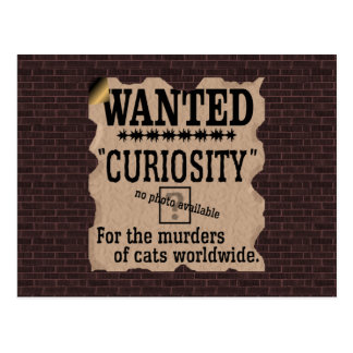 Curiosity Killed the Cat Wanted Poster - Vintage Post Cards