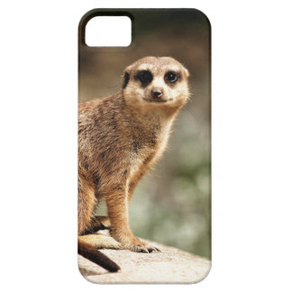 Curious Barely There iPhone 5 Case