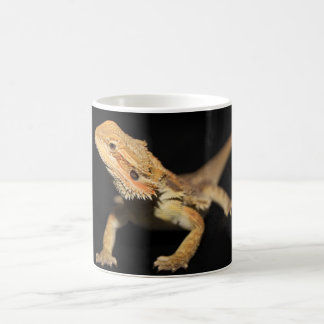 Curious Bearded Dragon 3 Coffee Mug