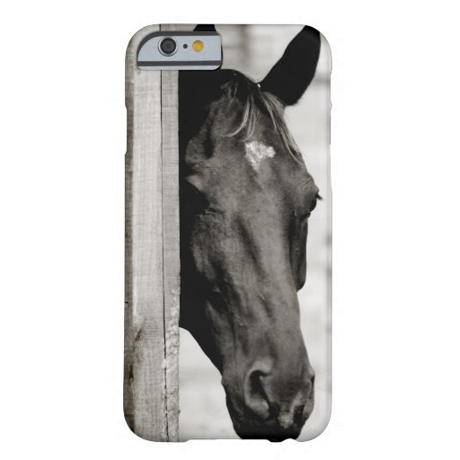 Curious Black Horse iPhone 6 Case
