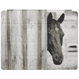 Curious Black Horse iPad Cover