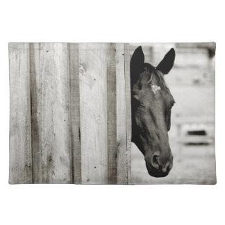 Curious Black Horse Placemat
