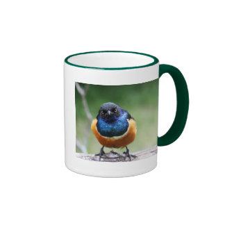 Curious Blue Bird Photo Closeup Ringer Mug