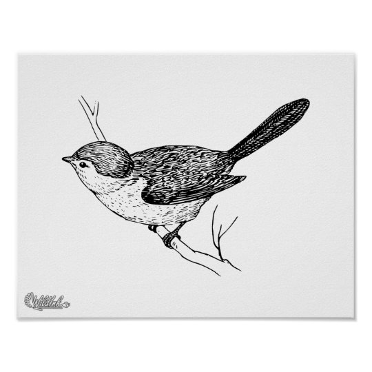 Curious Bushtit Bird Sketch Poster