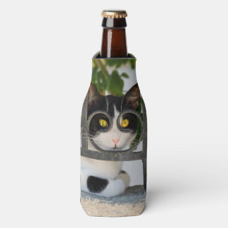 Curious Cat Eyes with Spectacles Frame Funny Photo Bottle Cooler