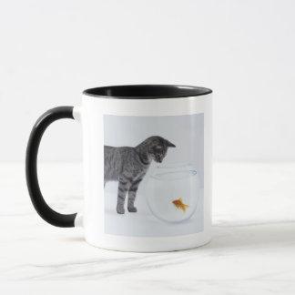 Curious cat watching goldfish in fishbowl mug