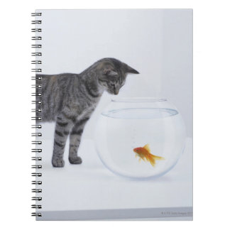 Curious cat watching goldfish in fishbowl notebook