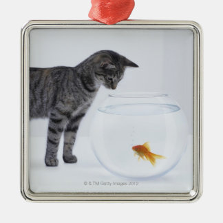 Curious cat watching goldfish in fishbowl Silver-Colored square decoration