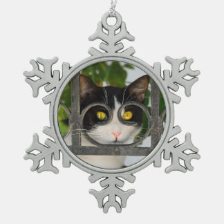 Curious Cat with Spectacles Frame - Xmas decor Snowflake Pewter Christmas Ornament