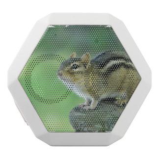 Curious Chipmunk White Boombot Rex Bluetooth Speaker