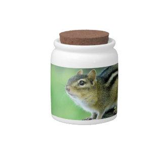 Curious Chipmunk  Candy Jar