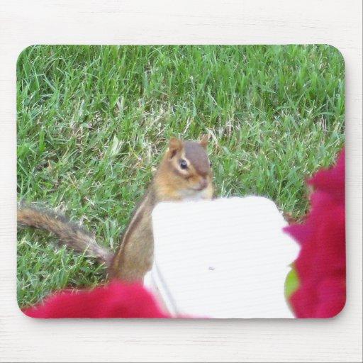 Curious Chipmunk Mousepad