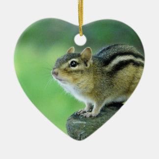Curious Chipmunk  Ornament