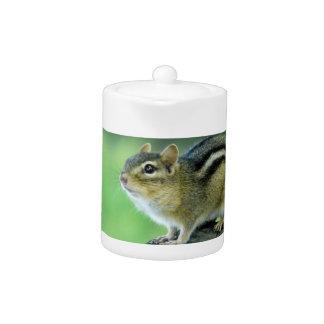 Curious Chipmunk  Teapot