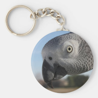 Curious Congo African Grey Parrot Basic Round Button Key Ring