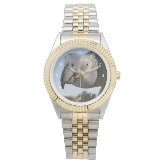 Curious Congo African Grey Parrot Wristwatches