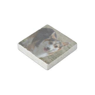 Curious Corgi Stone Magnet