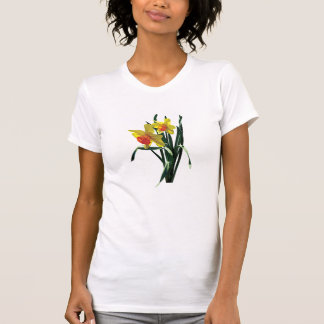 Curious Daffodils Ladies T-Shirt