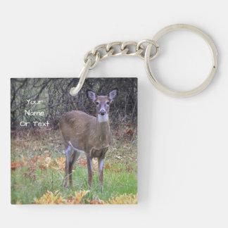 Curious Deer Key Ring