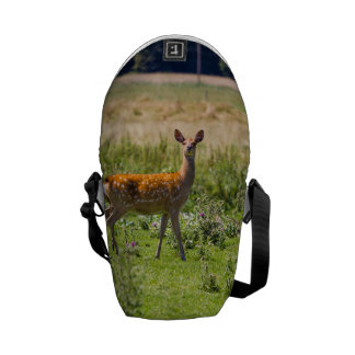 Curious Doe In A Grass Meadow, Animal Photo Messenger Bag
