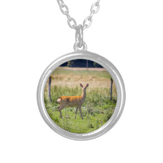 Curious Doe In A Grass Meadow, Animal Photo Personalized Necklace
