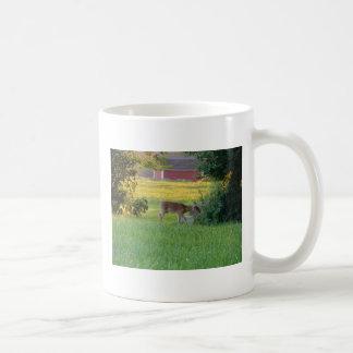 Curious Fawn Basic White Mug