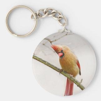 Curious Female Cardinal Keychain