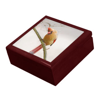 Curious Female Cardinal Wooden Keepsake Box