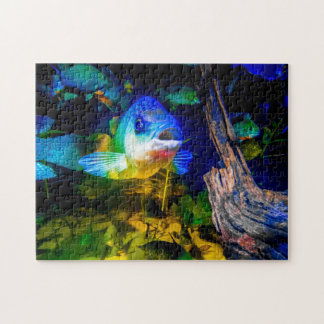 Curious Fish Jig Saw Puzzle