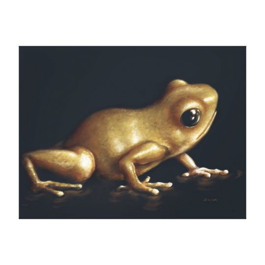 Curious Frog Painting Canvas Print