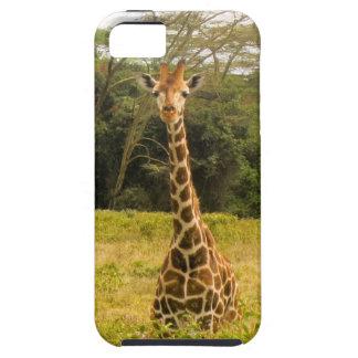 Curious Giraffe Tough iPhone 5 Case