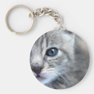 Curious Grey Kitten Basic Round Button Key Ring