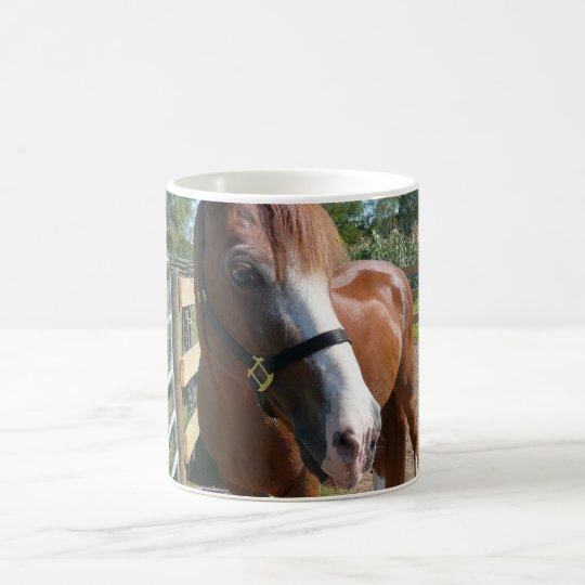 Curious Horse Coffee Mug