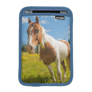 Curious horse in an alpine meadow in summer iPad mini sleeve