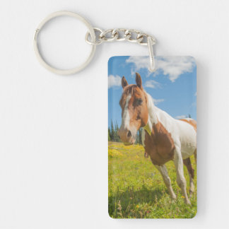Curious horse in an alpine meadow in summer key ring