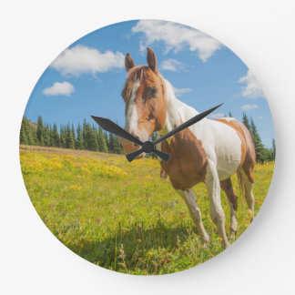 Curious horse in an alpine meadow in summer large clock