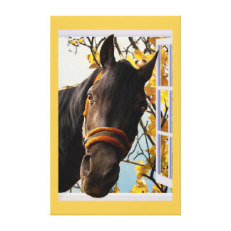 Curious Horse Looking Through The Kitchen Window Gallery Wrapped Canvas