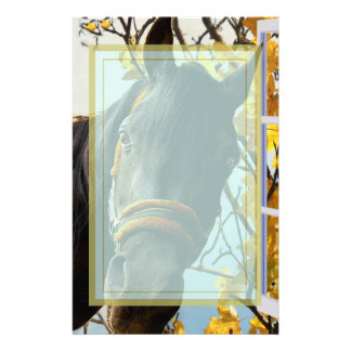 Curious Horse Looking Through The Kitchen Window Stationery Design